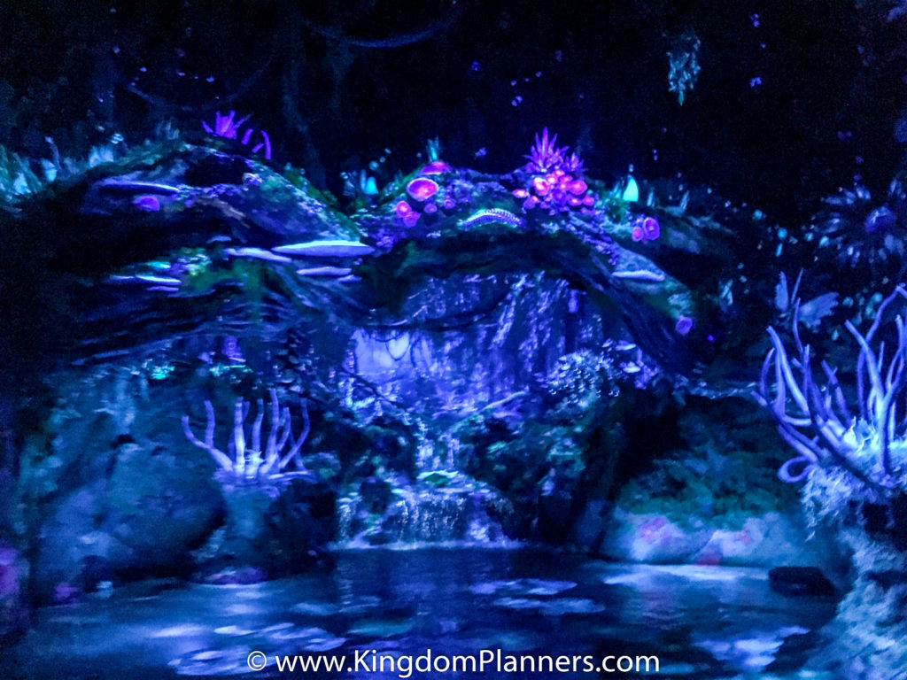 KingdomPlannersPandora-21